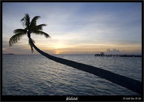 Sunset (SDV_5536)