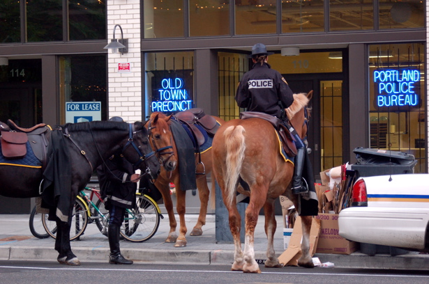 le_ppb_horses4