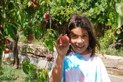 look! a peach!