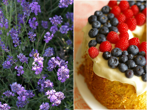 lavender chiffon cake2