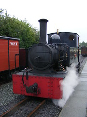 Gelert at the WHR(P)