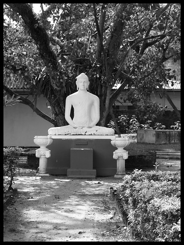 Buddha at the Colombo Museum b/w