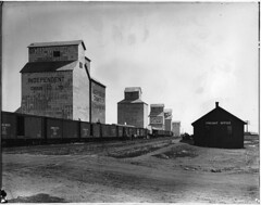 Grain elevators and train, Claresholm, AB, 1918 (Muse McCord Museum) Tags: canada train rail railway alberta prairie agriculture railwaytrack boxcars 1918 freighttrain grainelevators claresholm mccordmuseum notman musemccord freightoffice commons:event=commonground2009