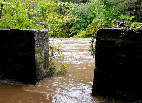 River Ayr over its bank