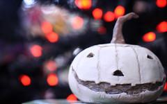 halloween bokeh (ginnerobot) Tags: orange cute halloween smile pumpkin bokeh jackolantern traxfarms viewonblack