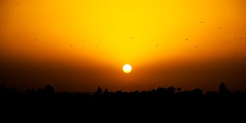 Atardece en Aswan
