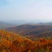 Blue Ridge Mountains in the Fall by **Lili**