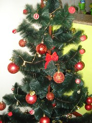 Minha árvore de Natal!