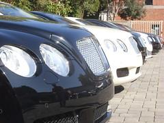 Bentleys (JSFauxtaugraphy) Tags: hot sexy cars beautiful car joseph photography amazing martin samsung automotive super hills stevenson hawt beverly rolls lamborghini royce bentley aston josephs exotics s85 bentely