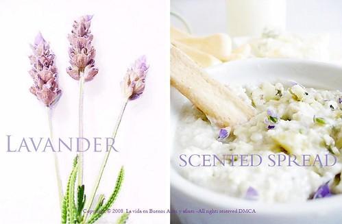Scented lavander spread