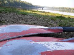 Oars on the shore (jexplique) Tags: skulls see otto hrth ruder ruderer ottomaiglersee maigler