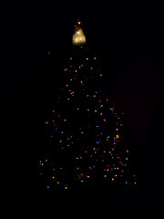 Christmas Tree in the Dark