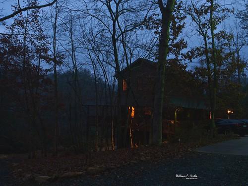 Around the Cabin
