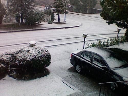 Snow is sticking at Metrotown