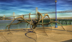 War of the Worlds.... (Menetnasht) Tags: leica bridge statue giant lumix bay pier spider fisherman san francisco legs arachnid panasonic wharf huge northern sculputure eight fz50 calfiornia photofaceoffwinner friendlychallenge