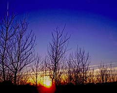 Streaks in Evening Sky (joehall45) Tags: blue trees sunset sky jets trail magiceye theblues naturesfinest mywinners 100awards