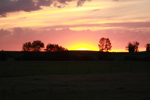 Montana June 208 141
