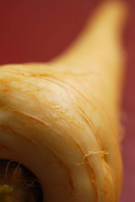 parsnip © haalo