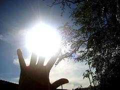 Ti porto in dono un raggio di sole per te...