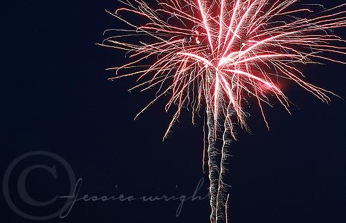 Palm tree firework