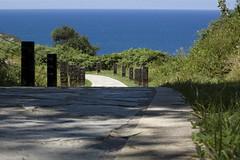 """""""el camino"""" (Tinta China2007) Tags: azul mar camino revolucin palabras genio locura cantbrico emancipacin adolescencia aos70 continuacin musiquita migrannoche sendadelacosta"""