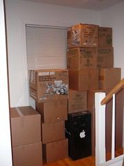 the window was soon blocked (alist) Tags: moving move alist boxes robison alicerobison ajrobison
