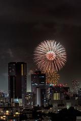 Fireflower 2 (JRaptor) Tags: urban anime japan japanese tokyo kyoto shinjuku fireworks o manga kagoshima chiba shikoku nightlife yokohama nara yakushima ebisu meguro hdr princessmononoke kurashiki mononokehime monookehime