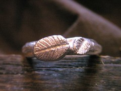 Leaf ring (bbel-uk) Tags: wood tree nature leaves forest silver leaf branch ring earrings bbel