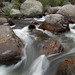 Stream - Rocky Mountain National Park