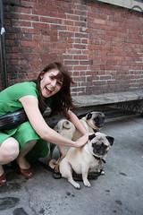 loves (the stella) Tags: nyc newyorkcity friends woman newyork green dogs girl animals canon megan pugs