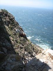IMG_7268.JPG (4johnny5) Tags: california county lighthouse nature point coast outdoor marin shoreline national marincounty pointreyes seashore reyes daytrip ptreyes dayhike pointreyesnationalshoreline