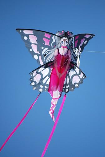 51-Fairy Kite