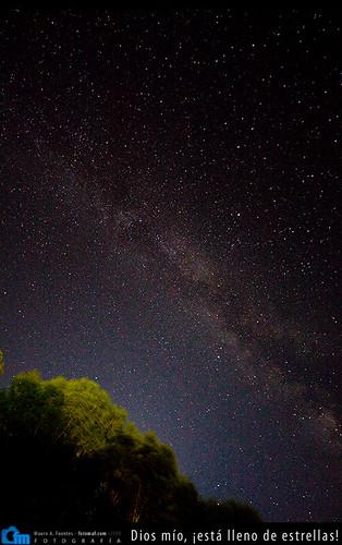 Dios mío, ¡está lleno de estrellas!