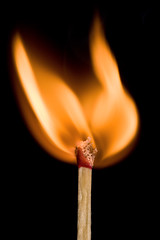 Me Flamin' Matches Keep Catchin' Fire! (Xenedis) Tags: match fire flame macro stilllife newsouthwales nsw australia