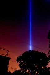 9-11-2008  Tribute In Light. (woodendesigner) Tags: world new york city blue light sky color tree silhouette brooklyn night backyard view anniversary year 911 attack center beam deck tribute seventh trade tributeinlight 9112008