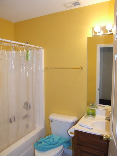 before shot of kids' bathroom::yuck!