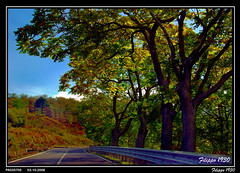 Government road 116 - NEBRODI PARK   -  PA035705 (Felipe 1930) Tags: autumn town day going soe toward digitalcameraclub justonelook diamondheart autumnandwinter platinumphoto colorphotoaward crystalaward raccuja empyreanlandandcityscapes filippo1930 nebrodipark theperfectphotographer naturespotofgold allmemorieswellcome photographerparadise governmentroad116 dragonflyawardgroup