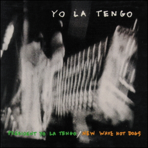 presidentyolatengo