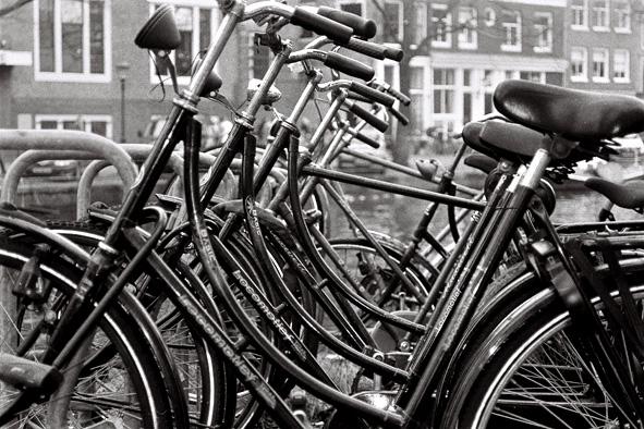 La familia (Amsterdam 2005)