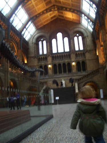 Inside Natural History Museum, London