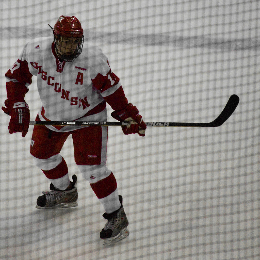 The Worlds Best Photos Of Bucky And Hockey Flickr Hive Mind