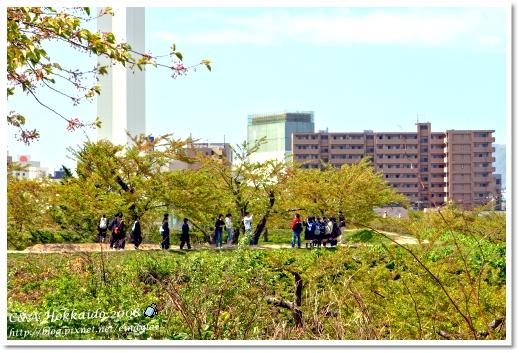 Hokkaido_2123