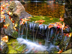 Colorfall (ecstaticist) Tags: autumn canada fall water glass leaves garden flow japanese leaf long exposure raw bc smooth victoria falls hdr butchart topaz photomatix eow pseudohdr csio aplusphoto infinestyle exf1 vosplusbellesphotos inomineyouthenewkingofexplore