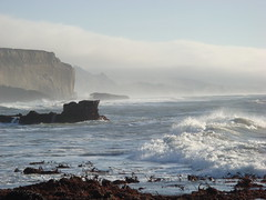 MartinsBeach_2007-037 (Martins Beach, California, United States) Photo