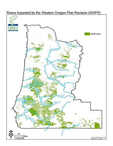 Rivers Impacted by the Western Oregon Plan Revision (WOPR)
