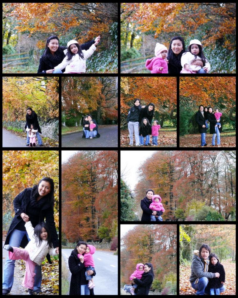 autumn2r