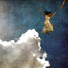 [Track 2] Heroes (holly henry) Tags: new david me clouds self jump album cook gravity american hero idol heroes 2008 selftitled