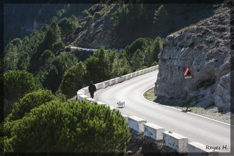 II KDD-Ruta Sierra de Cadiz 3051723930_8e259c38f1_o