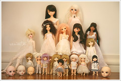 First Resin Family Picture, my BJDs. (r e n a t a) Tags: blue yellow canon doll dolls cara tan may hobby sd ciel coco tiny heads miel lea bjd bonec
