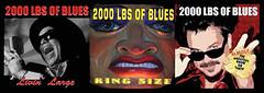 2000 LBS OF BLUES CDS (imkilljoy) Tags: 2000 cd blues lbs